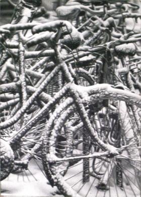 *Cicli